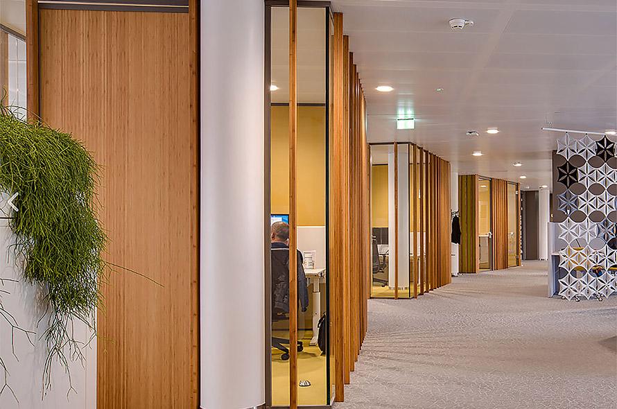 Bamboe kantoorinterieur